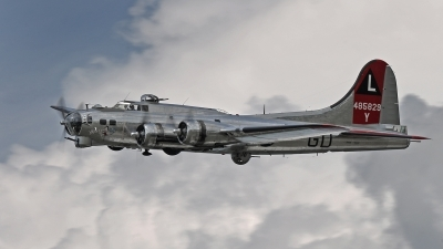 Photo ID 211106 by David F. Brown. Private Yankee Air Force Boeing B 17G Flying Fortress 299P, N3193G