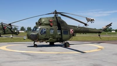 Photo ID 211221 by Alfred Koning. Poland Army Mil Mi 2URP, 7336