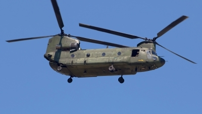 Photo ID 212033 by Roberto Bianchi. Netherlands Air Force Boeing Vertol CH 47D Chinook, D 106