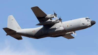 Photo ID 212372 by F. Javier Sánchez Gómez. Spain Air Force Lockheed C 130H 30 Hercules L 382, TL 10 01