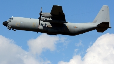 Photo ID 215635 by Michael Frische. Spain Air Force Lockheed C 130H 30 Hercules L 382, TL 10 01