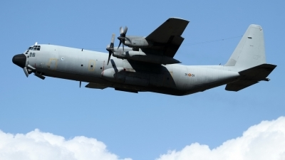 Photo ID 215668 by Sybille Petersen. Spain Air Force Lockheed C 130H 30 Hercules L 382, TL 10 01