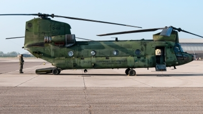 Photo ID 217656 by Varani Ennio. Netherlands Air Force Boeing Vertol CH 47D Chinook, D 102