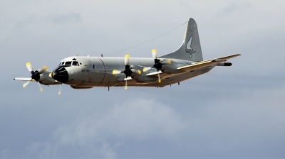 Photo ID 221048 by F. Javier Sánchez Gómez. Spain Air Force Lockheed P 3A Orion, P 3A 01