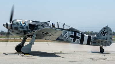 Photo ID 225979 by W.A.Kazior. Private Planes of Fame Air Museum Focke Wulf FW 190A 9, N190RF