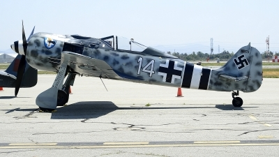 Photo ID 225996 by Peter Boschert. Private Planes of Fame Air Museum Focke Wulf FW 190A 9, N190RF