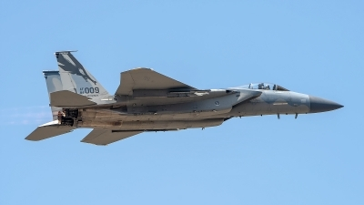 Photo ID 226658 by W.A.Kazior. USA Air Force McDonnell Douglas F 15C Eagle, 84 0009