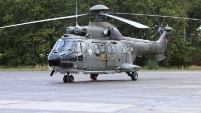 Photo ID 232170 by Sybille Petersen. Switzerland Air Force Aerospatiale AS 332M1 Super Puma, T 315
