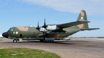 Photo ID 26628 by Martin Kubo. Argentina Air Force Lockheed C 130H Hercules L 382, TC 61