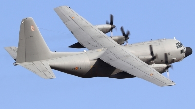 Photo ID 232961 by Ruben Galindo. Spain Air Force Lockheed C 130H Hercules L 382, T 10 08