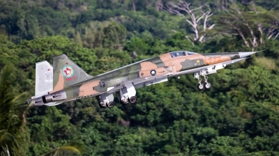 Photo ID 233016 by Andreas Zeitler - Flying-Wings. Taiwan Air Force Northrop F 5E Tiger II, 5272