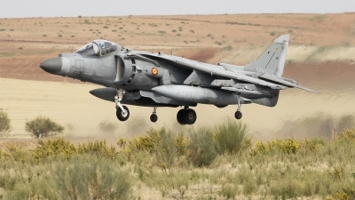 Photo ID 233239 by F. Javier Sánchez Gómez. Spain Navy McDonnell Douglas EAV 8B Harrier II, VA 1B 38