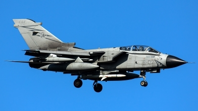 Photo ID 236447 by Thomas Ziegler - Aviation-Media. Italy Air Force Panavia Tornado ECR, MM7019