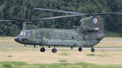 Photo ID 243119 by kristof stuer. Netherlands Air Force Boeing Vertol CH 47D Chinook, D 102