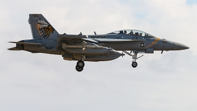 Photo ID 244130 by Aaron C. Rhodes. USA Navy Boeing EA 18G Growler, 169124