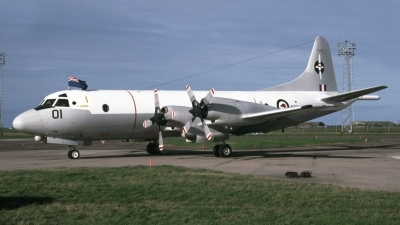Photo ID 27437 by Tom Gibbons. New Zealand Air Force Lockheed P 3K Orion, NZ4201