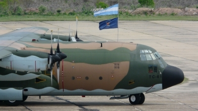 Photo ID 27625 by Martin Kubo. Argentina Air Force Lockheed C 130H Hercules L 382, TC 61