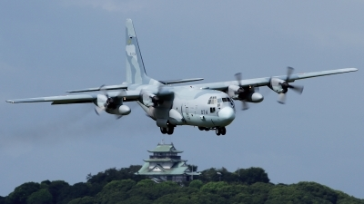 Photo ID 248551 by Shotaro Shimizu. Japan Air Force Lockheed C 130H Hercules L 382, 45 1074