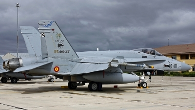 Photo ID 249218 by Fernando Sousa. Spain Air Force McDonnell Douglas F A 18A Hornet, C 15 73