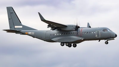 Photo ID 249238 by Ruben Galindo. Company Owned Airbus CASA C 295W, EC 003