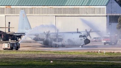 Photo ID 249545 by Ruben Galindo. Spain Air Force Lockheed C 130H Hercules L 382, T 10 03