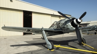 Photo ID 252160 by W.A.Kazior. Private Planes of Fame Air Museum Focke Wulf Fw 190A 9, N190RF