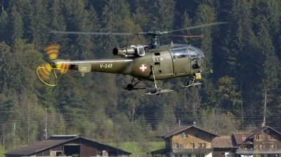 Photo ID 252980 by Joop de Groot. Switzerland Air Force Aerospatiale SA 316B Alouette III, V 243