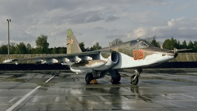 Photo ID 29362 by Rainer Mueller. Russia Air Force Sukhoi Su 25, 09 RED