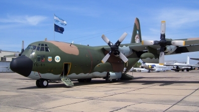 Photo ID 31124 by Franco S. Costa. Argentina Air Force Lockheed C 130H Hercules L 382, TC 61