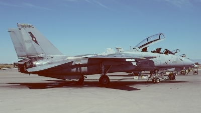 Photo ID 41641 by Klemens Hoevel. USA Navy Grumman F 14A Tomcat, 159873