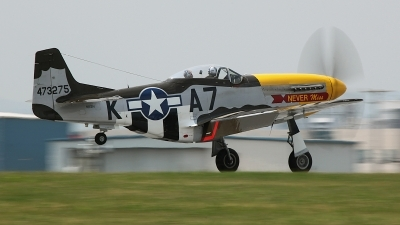 Photo ID 50776 by David F. Brown. Private Private North American F 51D MkII Mustang, N119H