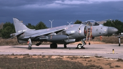 Photo ID 65790 by Tom Gibbons. UK Navy British Aerospace Sea Harrier FA 2, ZD607