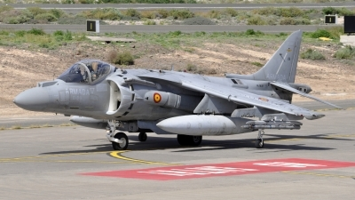 Photo ID 67689 by Bart Hoekstra. Spain Navy McDonnell Douglas AV 8B Harrier ll Plus, VA 1B 29