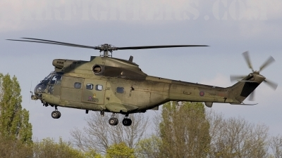 Photo ID 8520 by Chris Lofting. UK Air Force Westland SA 330E Puma HC1, ZA938