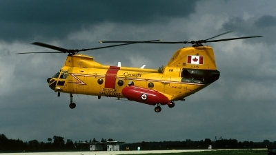 Photo ID 70341 by David F. Brown. Canada Air Force Boeing Vertol CH 113A Labrador, 11315
