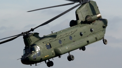 Photo ID 70722 by kristof stuer. Netherlands Air Force Boeing Vertol CH 47D Chinook, D 661