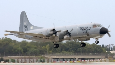 Photo ID 9414 by Gordon Zammit. Portugal Air Force Lockheed P 3P Orion, 14803