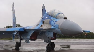 Photo ID 78987 by rob martaré. Ukraine Air Force Sukhoi Su 27UB, 75 BLUE