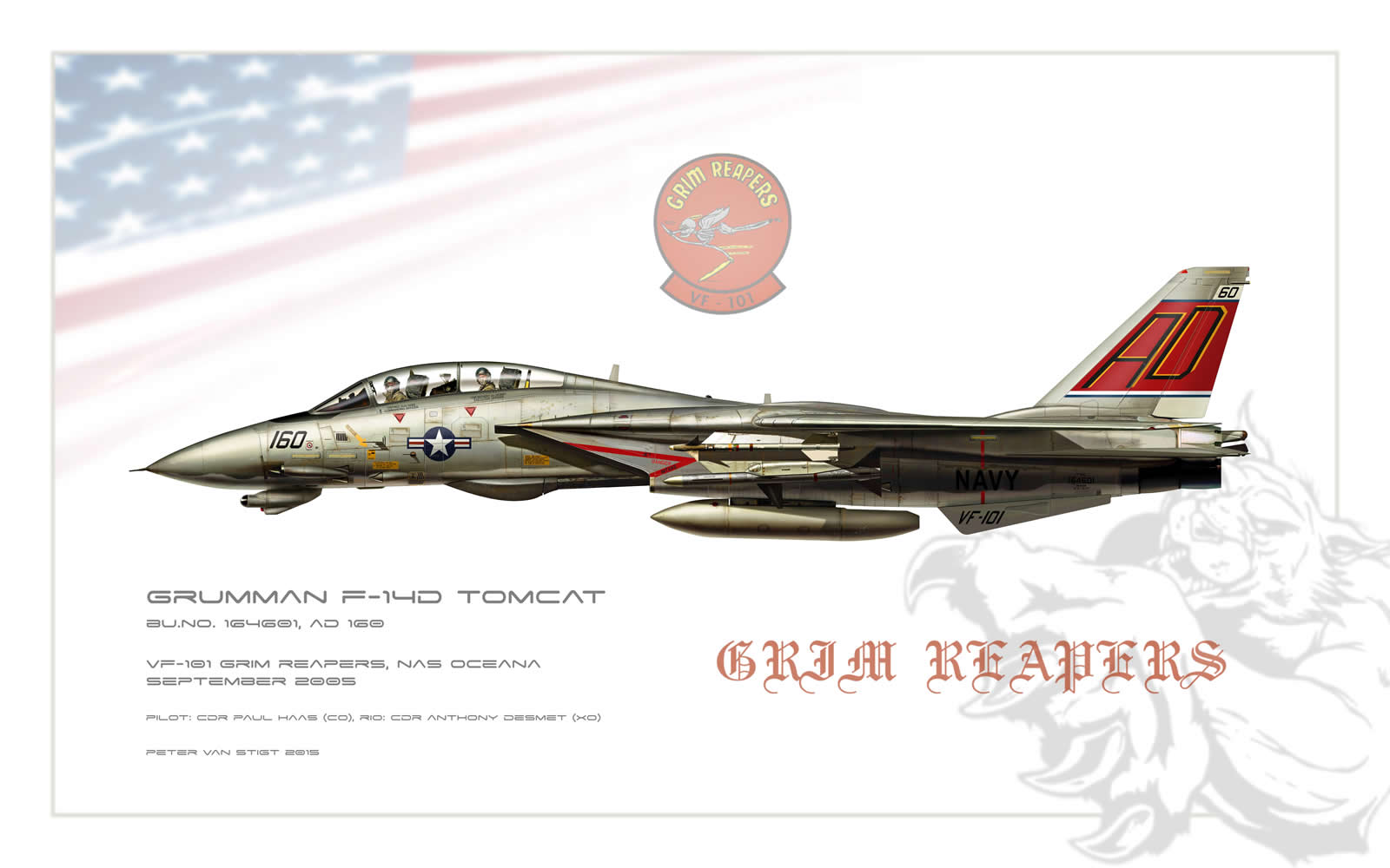 VF-101 Grim Reapers F-14 Tomcat Profile
