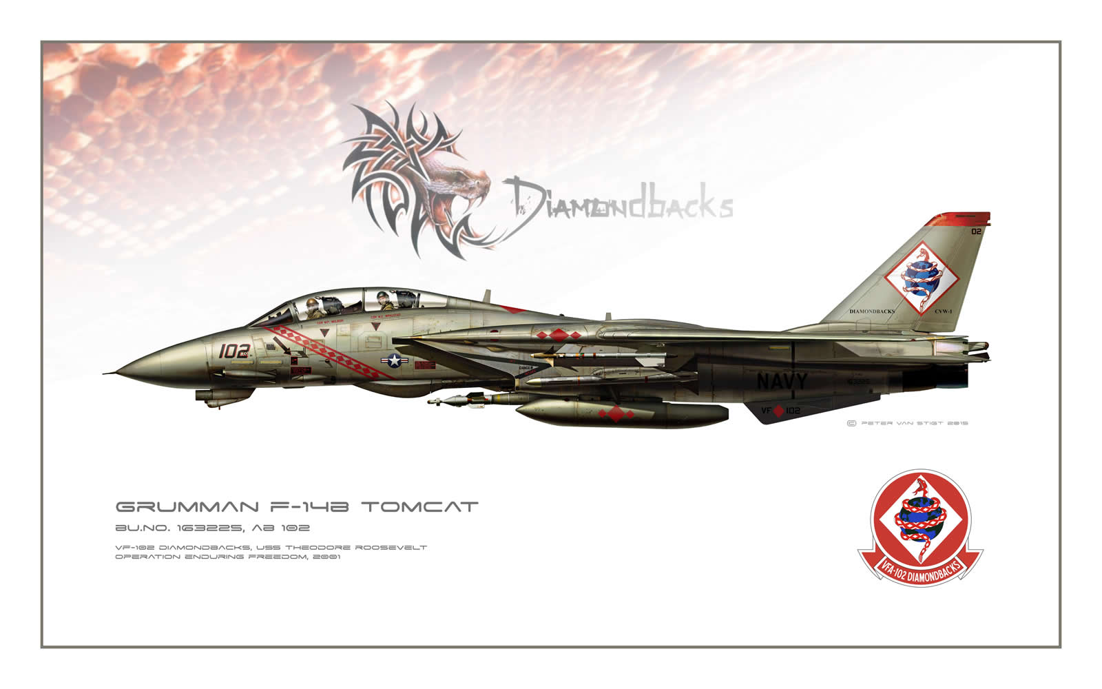 VF-102 Diamondbacks F-14 Tomcat Profile