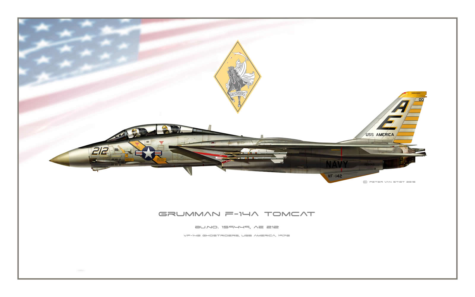 VF-142 Ghost Riders F-14 Tomcat Profile