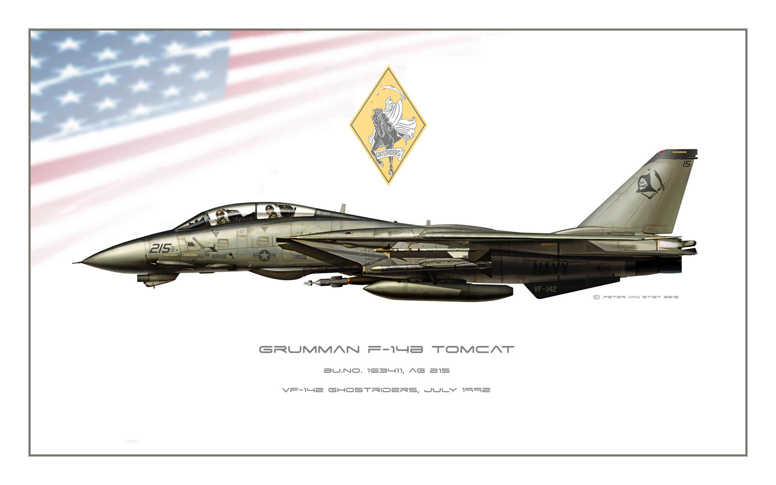 VF-142 Ghost Riders Low Viz F-14 Tomcat Profile