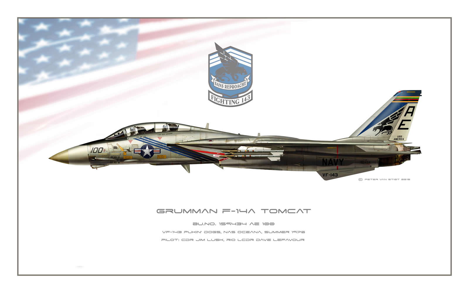 VF-143 Pukin Dogs F-14 Tomcat Profile