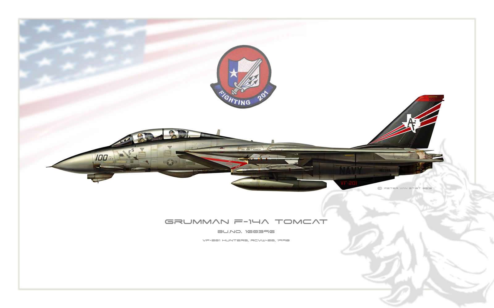 VF-201 Hunters F-14 Tomcat Profile