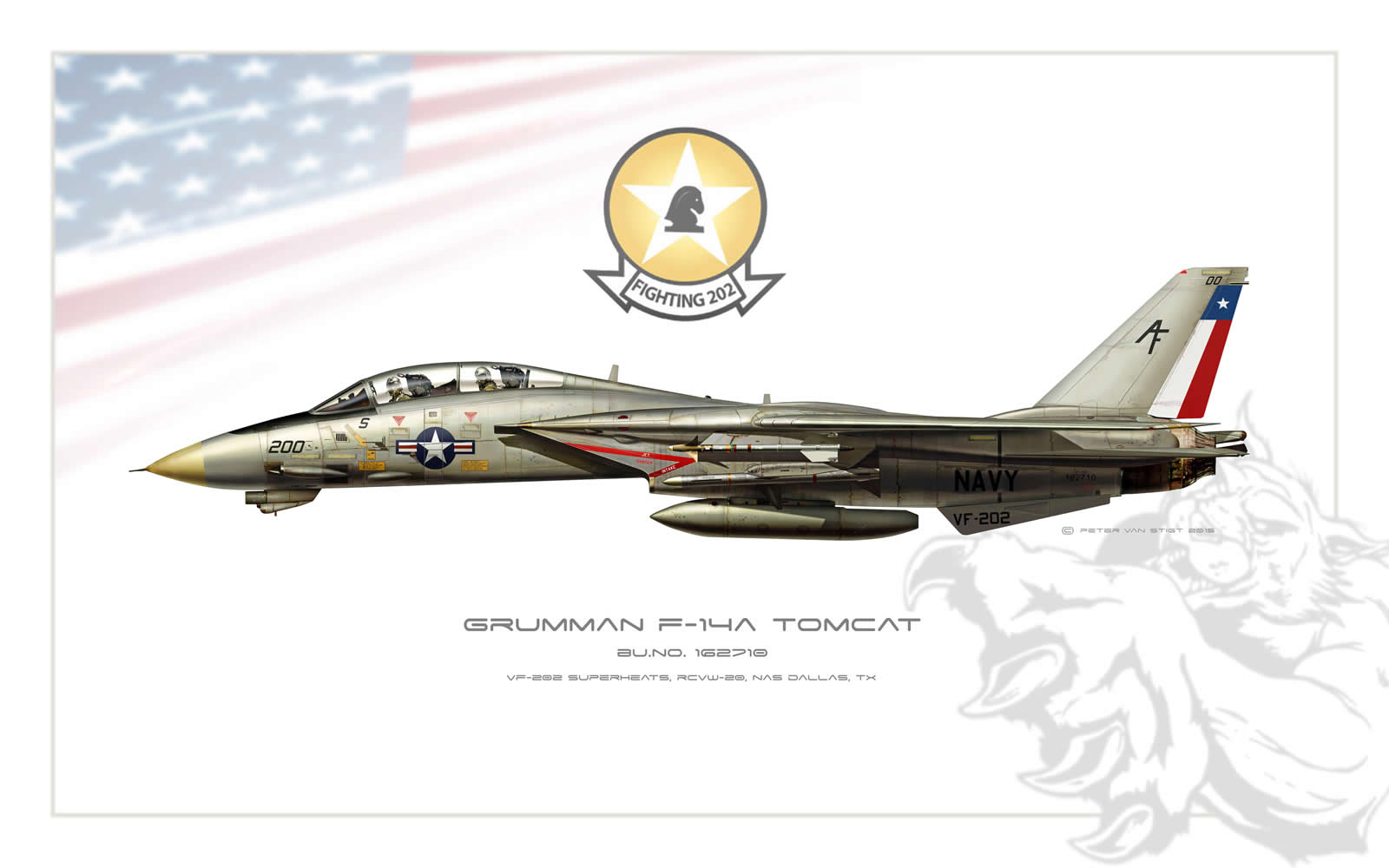 VF-202 Superheats F-14 Tomcat Profile