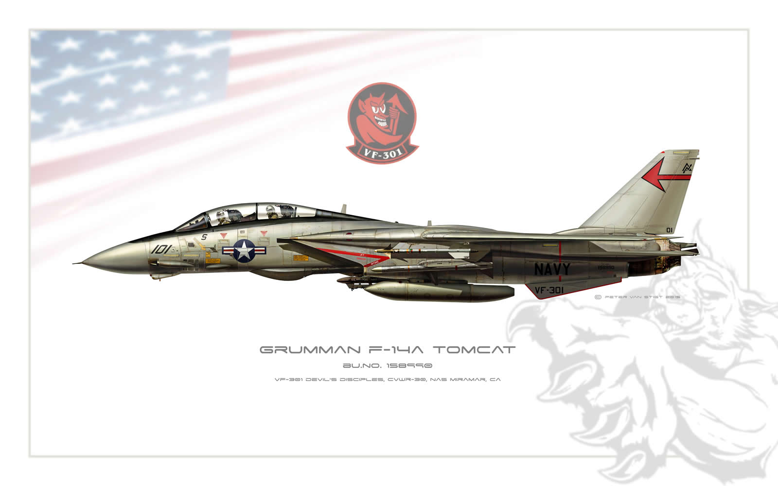 VF-301 Devil's Disciples F-14 Tomcat Profile