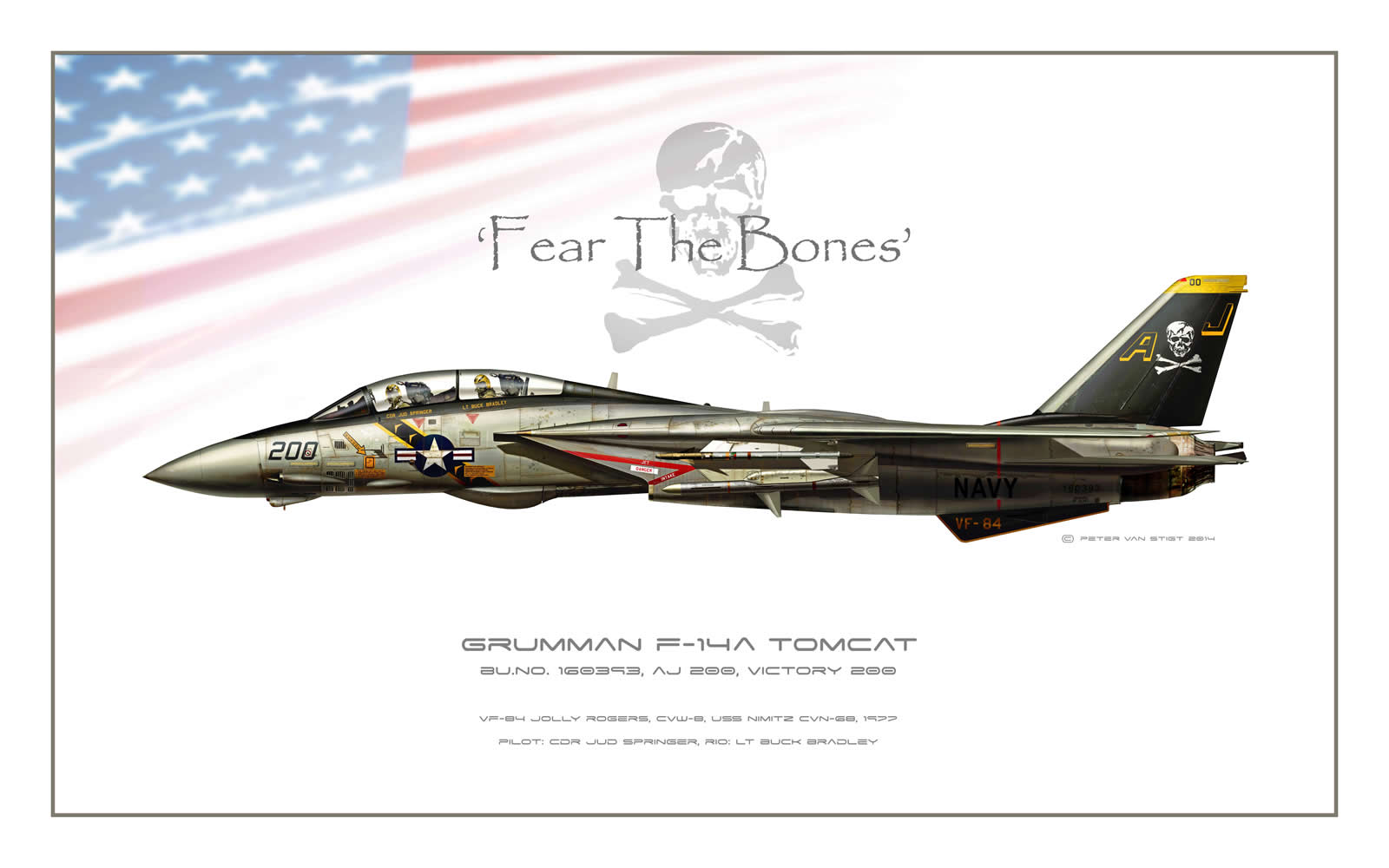 VF-84 Jolly Rogers F-14 Tomcat Profile