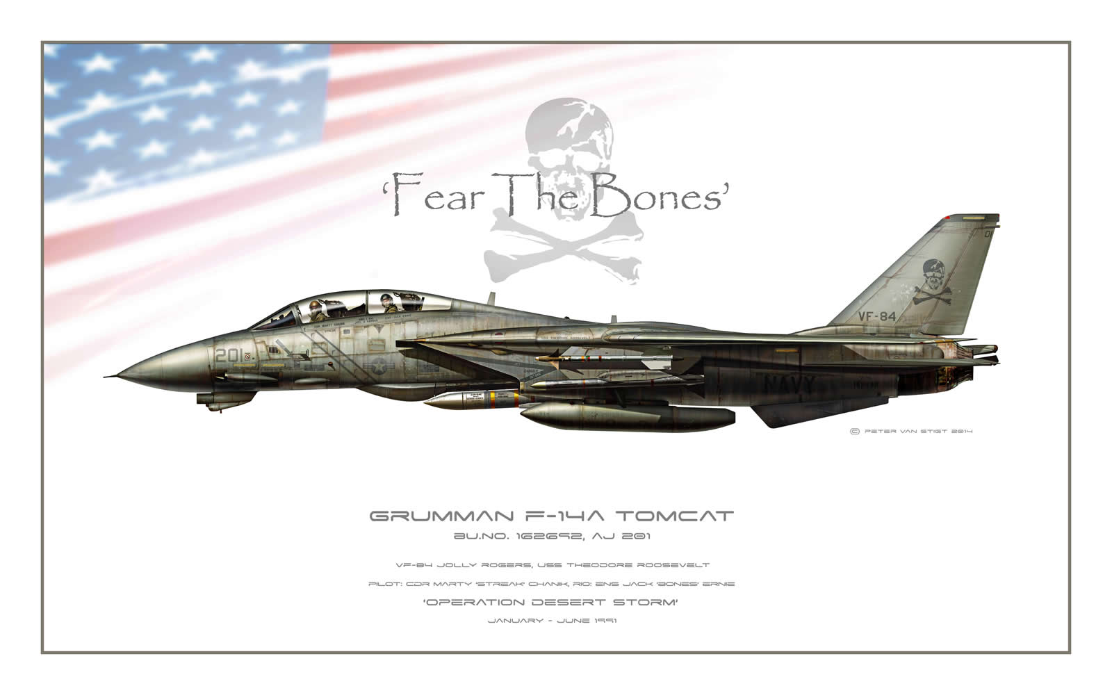 VF-84 Jolly Rogers Low Viz F-14 Tomcat Profile