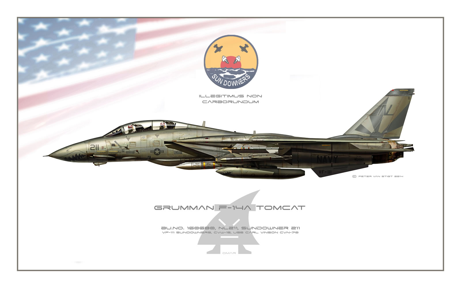 VF-111 Sundowners Low-viz F-14A Tomcat Profile