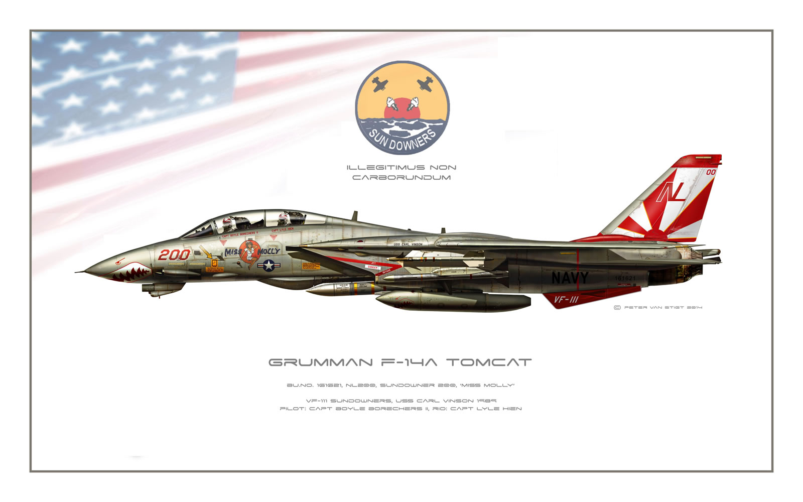 VF-111 Sundowners F-14 Tomcat Profile